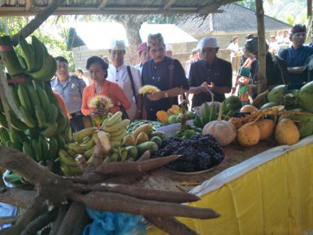 Melestarikan Adat Budaya dan Tradisi Lewat Lomba SUBAK